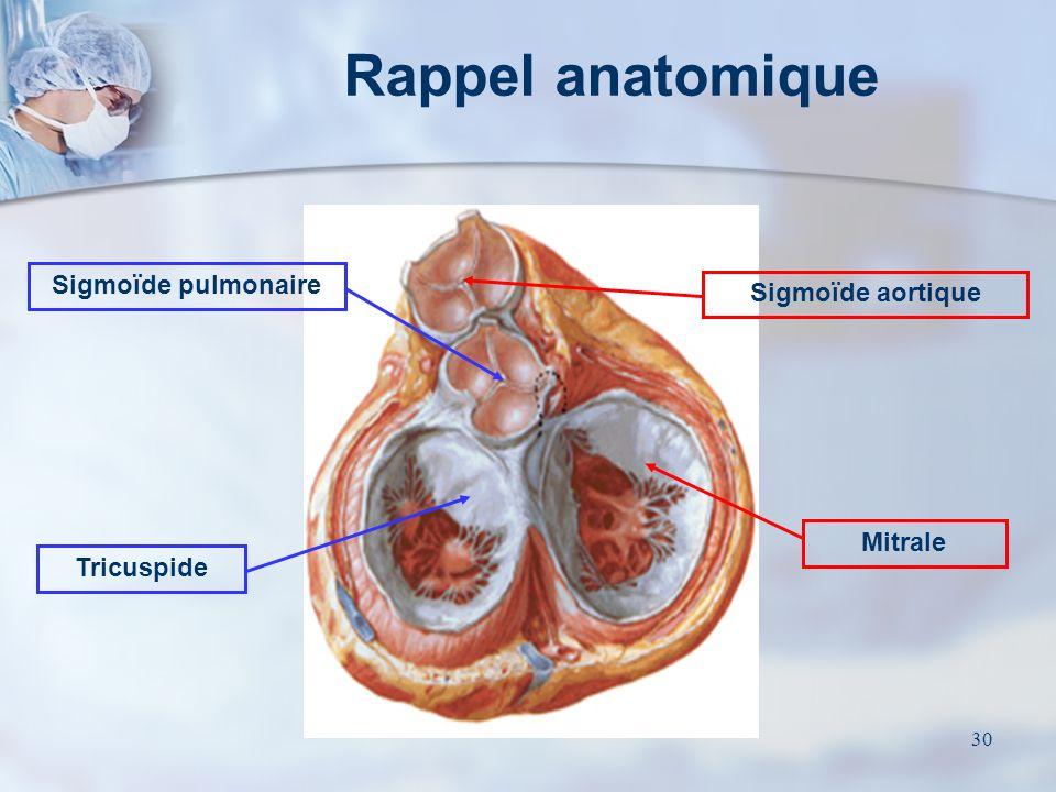Rappel anatomique Sigmoïde pulmonaire Sigmoïde aortique Mitrale