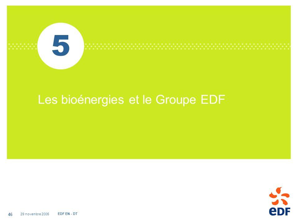5 Les bioénergies et le Groupe EDF 29 novembre 2005 EDF EN - DT