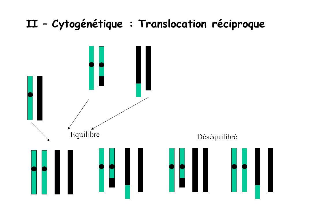 II – Cytogénétique : Translocation réciproque