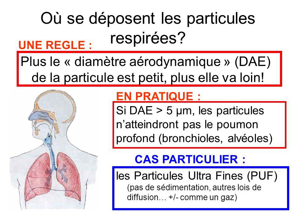 Où se déposent les particules respirées