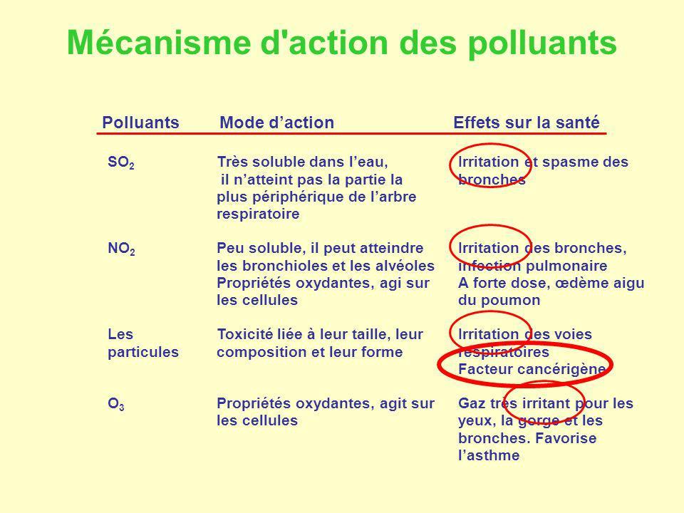 Mécanisme d action des polluants