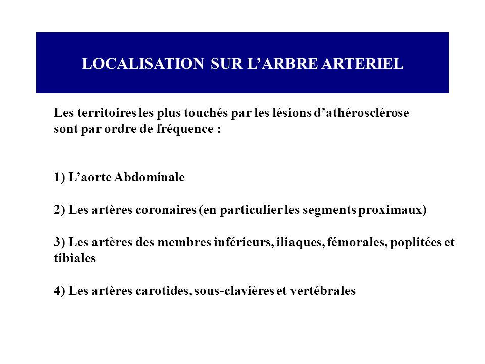 LOCALISATION SUR L'ARBRE ARTERIEL