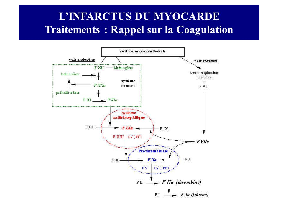 L'INFARCTUS DU MYOCARDE Traitements : Rappel sur la Coagulation