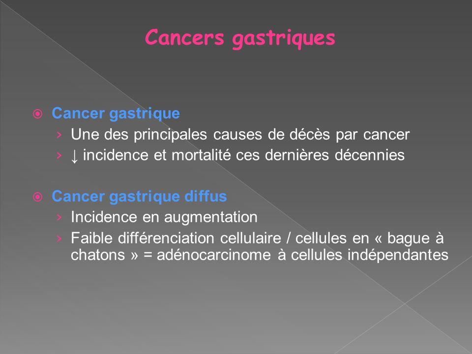 Cancers gastriques Cancer gastrique