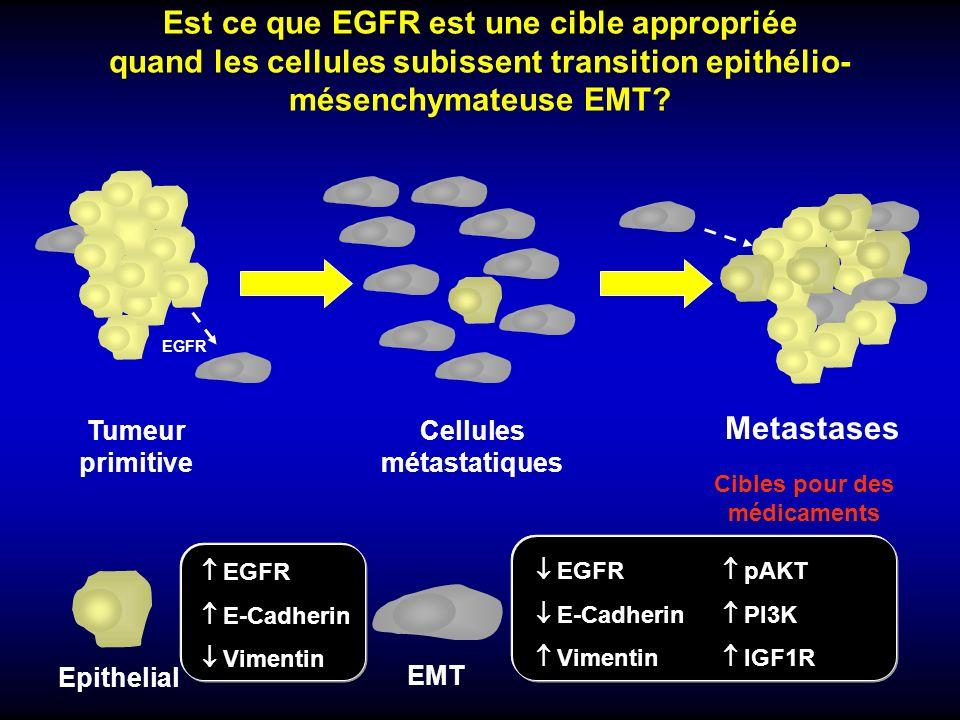 Cellules métastatiques