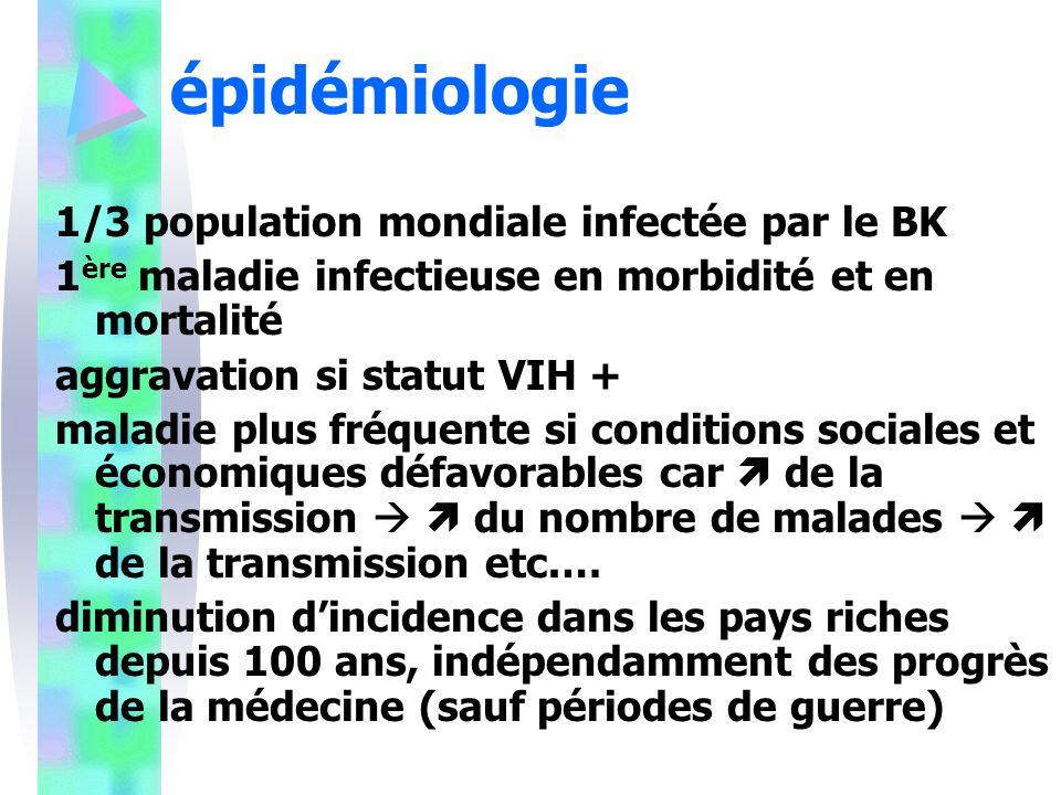 épidémiologie 1/3 population mondiale infectée par le BK