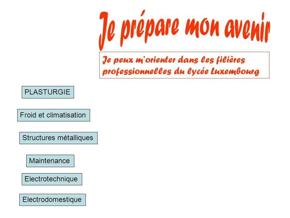 Je prépare mon avenir Je peux m'orienter dans les filières professionnelles du lycée Luxembourg. PLASTURGIE.