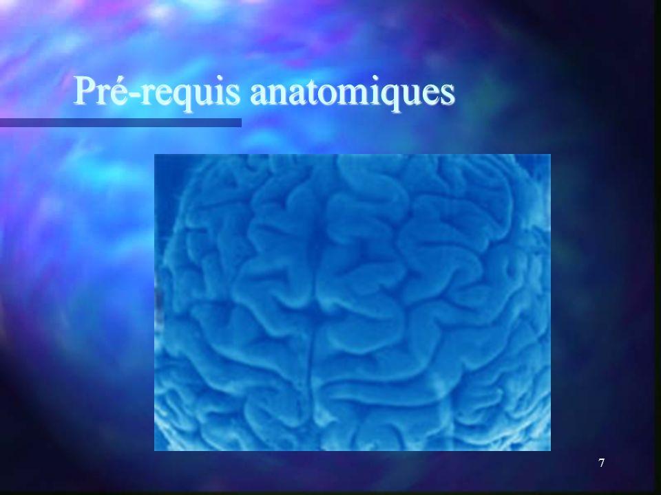 Pré-requis anatomiques
