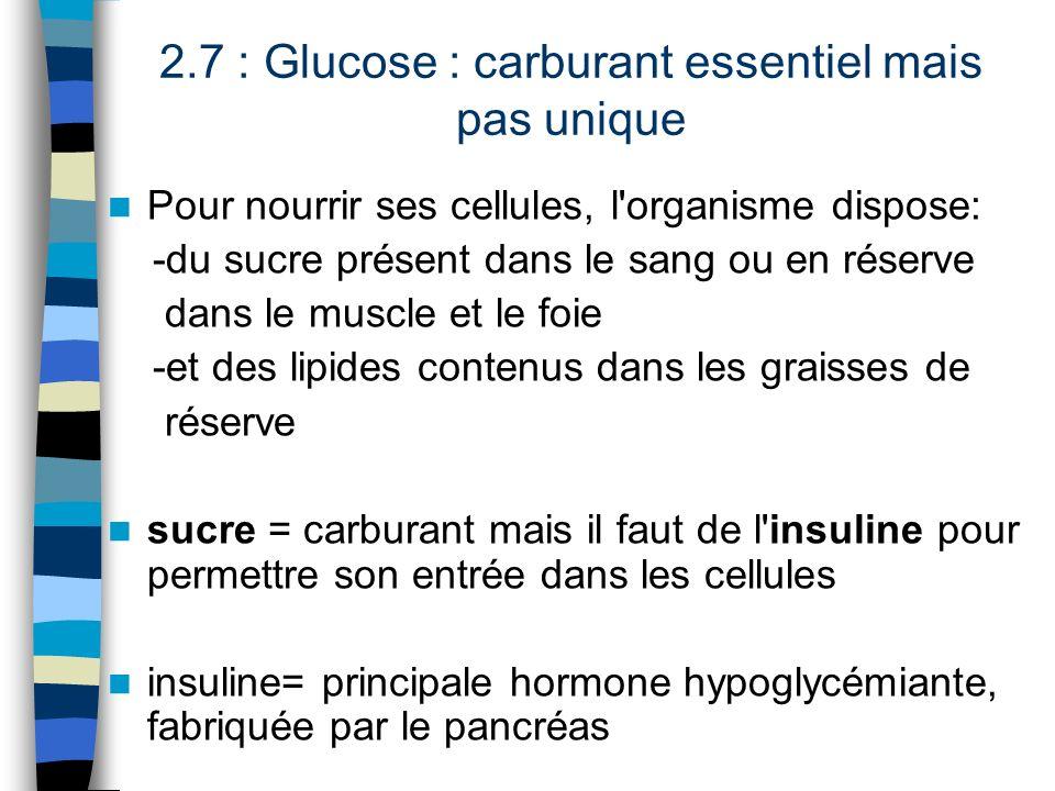 2.7 : Glucose : carburant essentiel mais pas unique