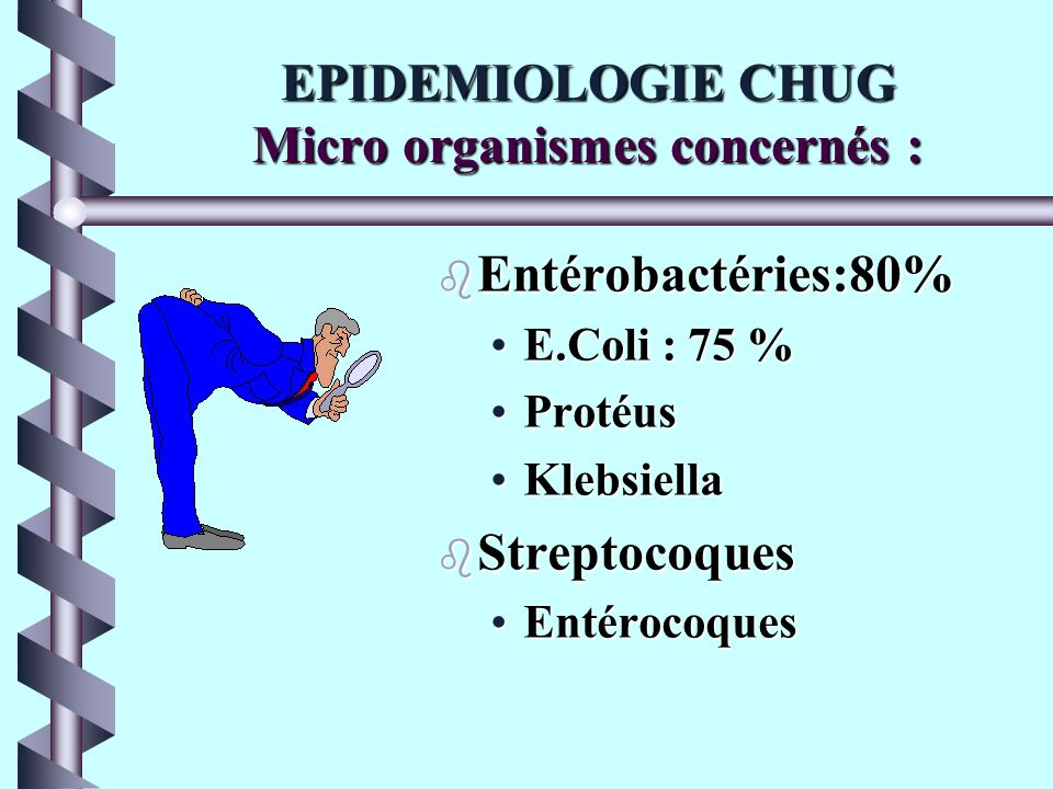 EPIDEMIOLOGIE CHUG Micro organismes concernés :