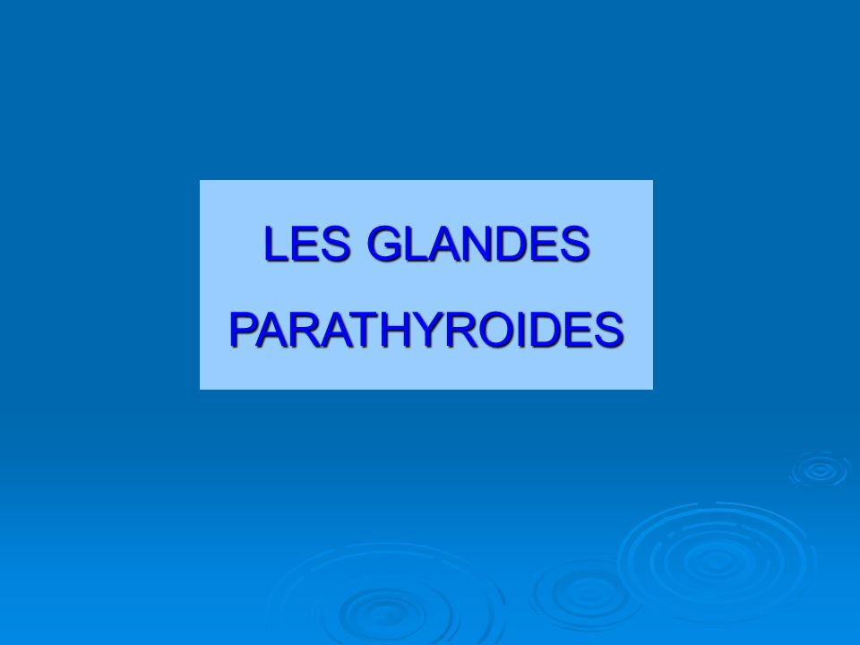 LES GLANDES PARATHYROIDES