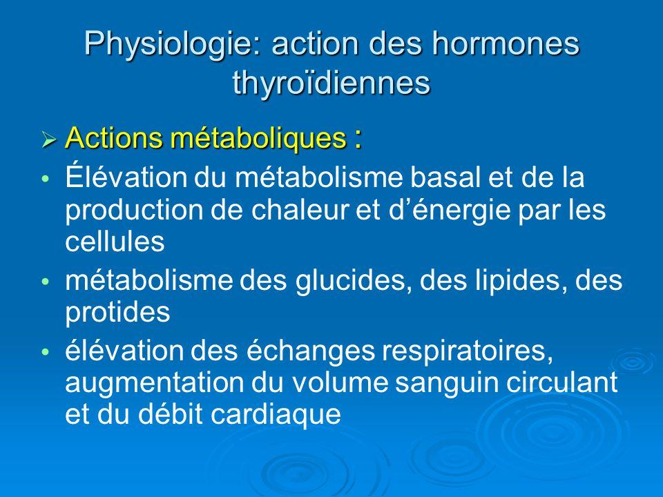 Physiologie: action des hormones thyroïdiennes