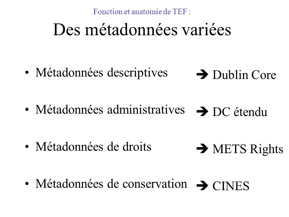 Fonction et anatomie de TEF : Des métadonnées variées