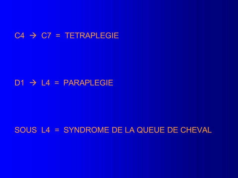 C4  C7 = TETRAPLEGIE D1  L4 = PARAPLEGIE SOUS L4 = SYNDROME DE LA QUEUE DE CHEVAL