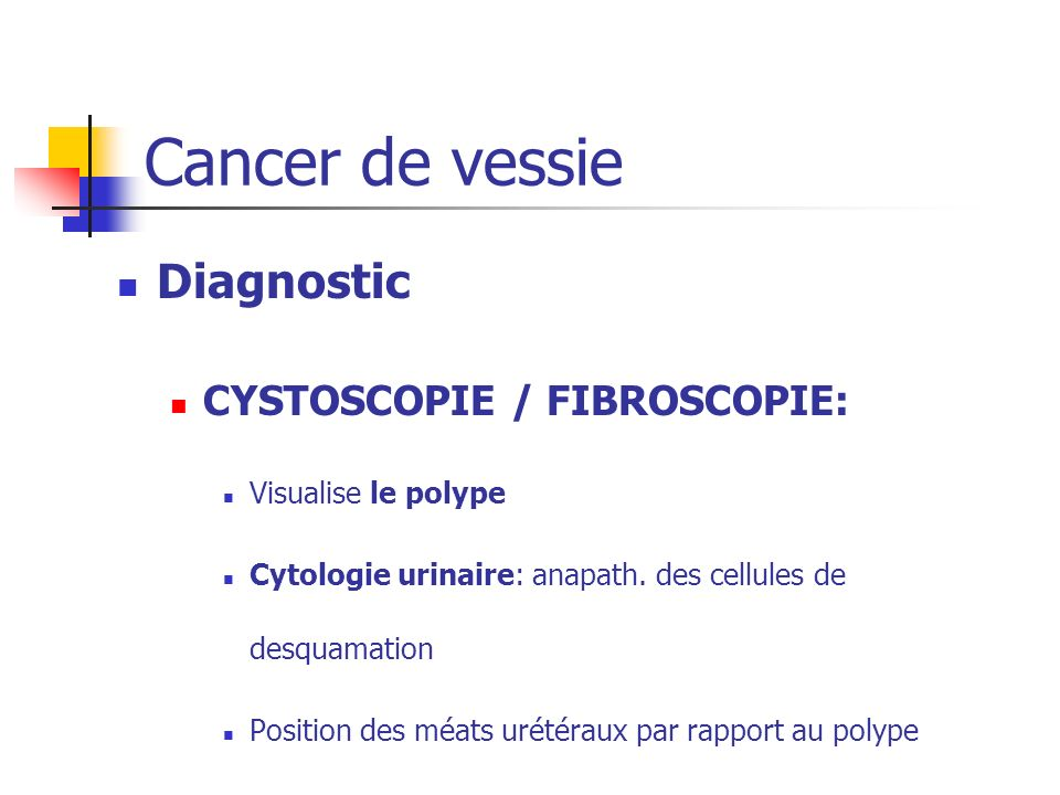 Cancer de vessie Diagnostic CYSTOSCOPIE / FIBROSCOPIE: