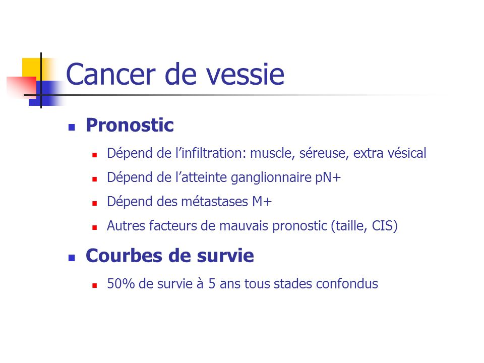 Cancer de vessie Pronostic Courbes de survie