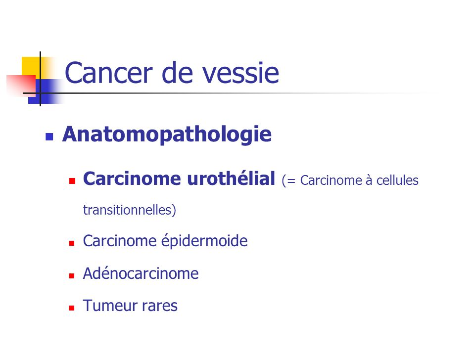 Cancer de vessie Anatomopathologie