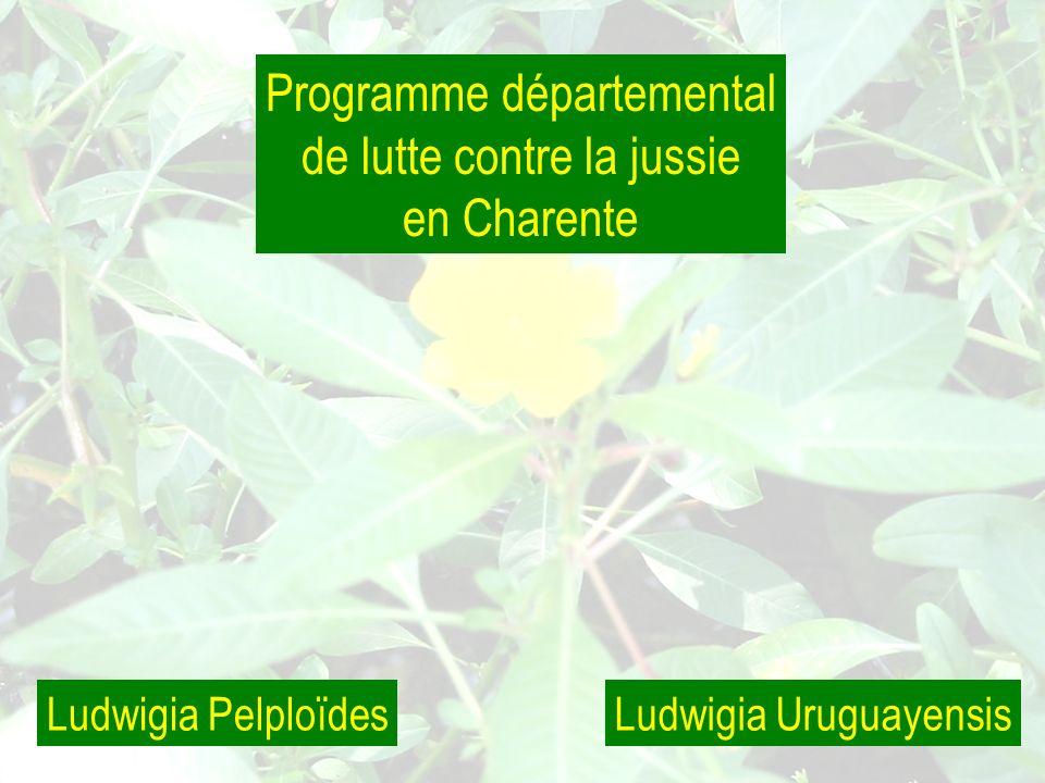 Programme départemental de lutte contre la jussie en Charente