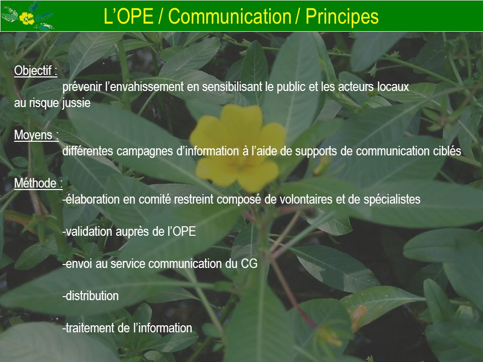 L'OPE / Communication / Principes