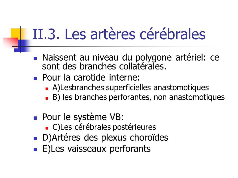 II.3. Les artères cérébrales
