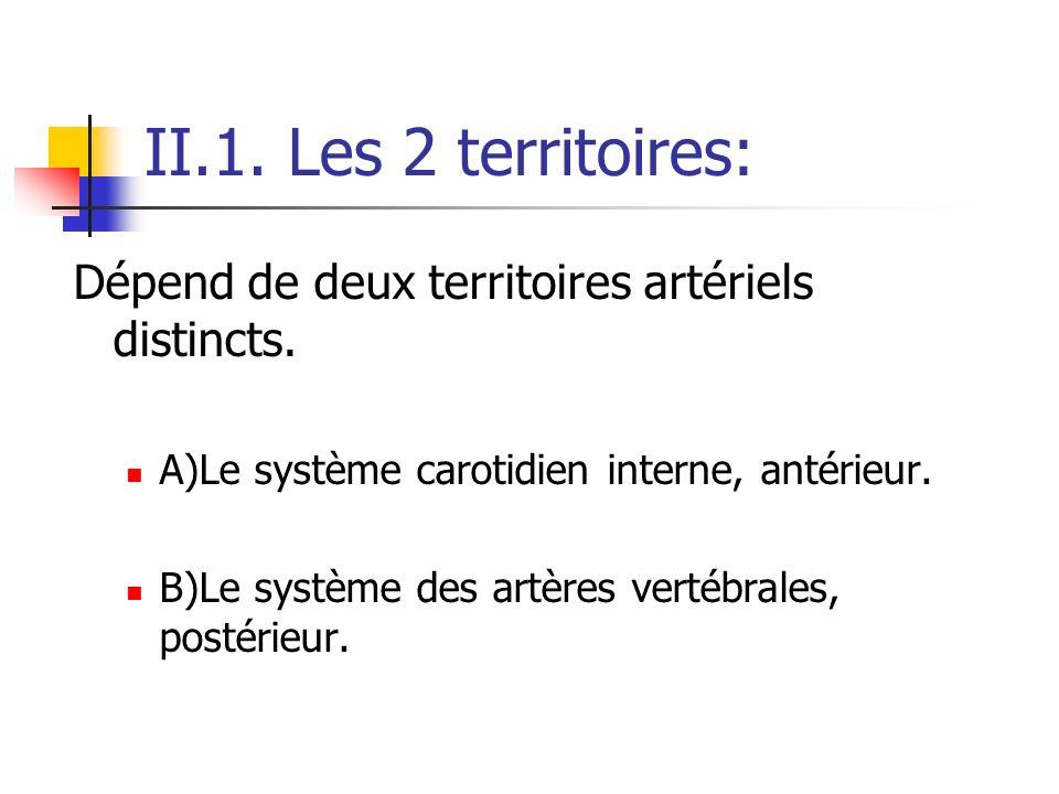 II.1. Les 2 territoires: Dépend de deux territoires artériels distincts. A)Le système carotidien interne, antérieur.