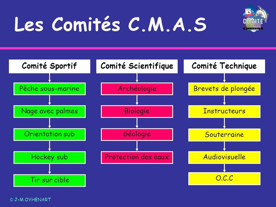 Les Comités C.M.A.S Comité Scientifique Comité Sportif