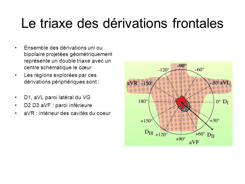 Le triaxe des dérivations frontales