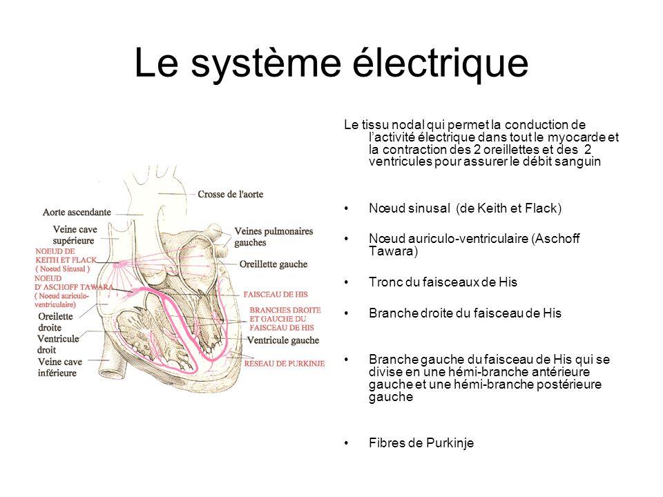 Le système électrique
