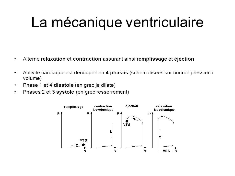 La mécanique ventriculaire
