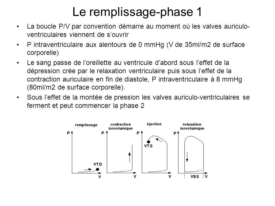 Le remplissage-phase 1 La boucle P/V par convention démarre au moment où les valves auriculo-ventriculaires viennent de s'ouvrir.