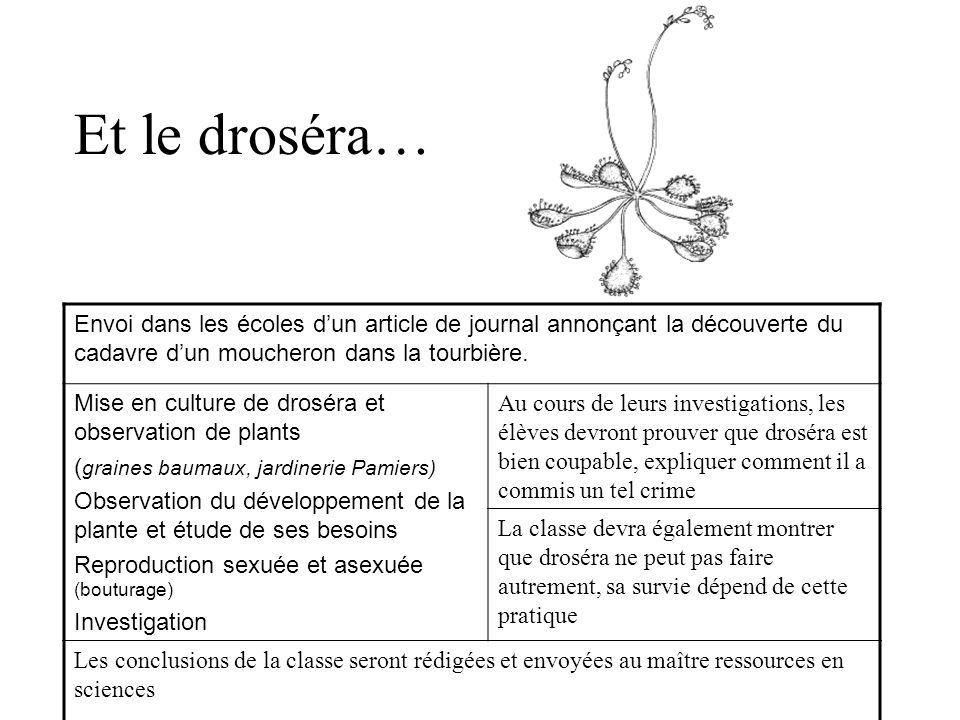 Et le droséra… Envoi dans les écoles d'un article de journal annonçant la découverte du cadavre d'un moucheron dans la tourbière.