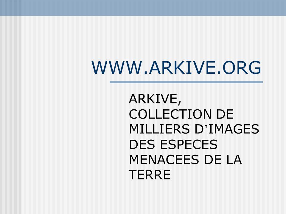 WWW.ARKIVE.ORG ARKIVE, COLLECTION DE MILLIERS D'IMAGES DES ESPECES MENACEES DE LA TERRE
