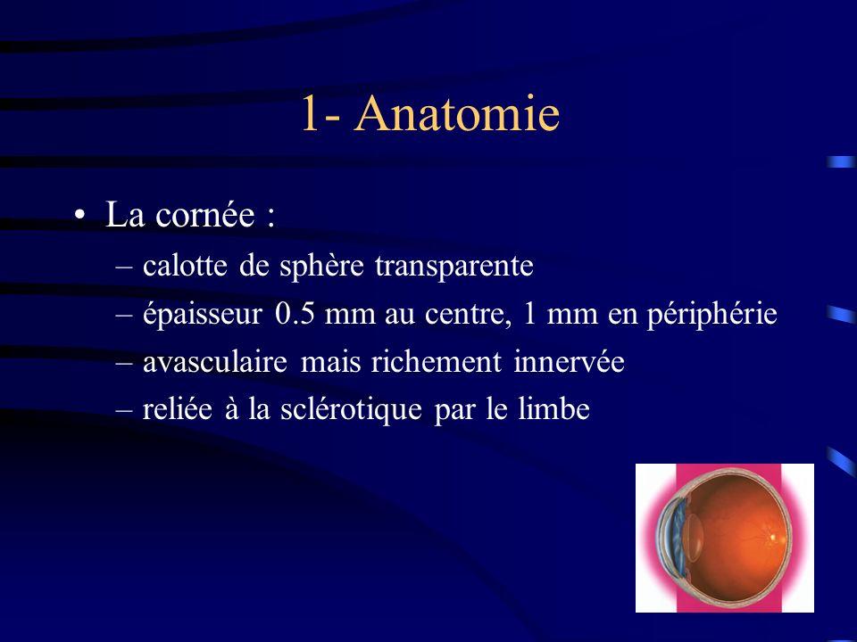 1- Anatomie La cornée : calotte de sphère transparente