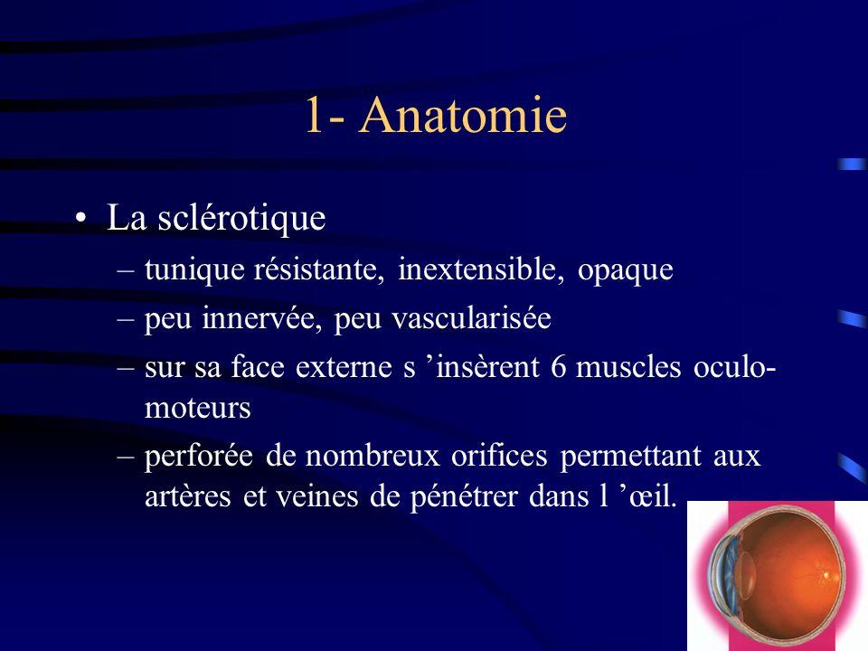 1- Anatomie La sclérotique tunique résistante, inextensible, opaque