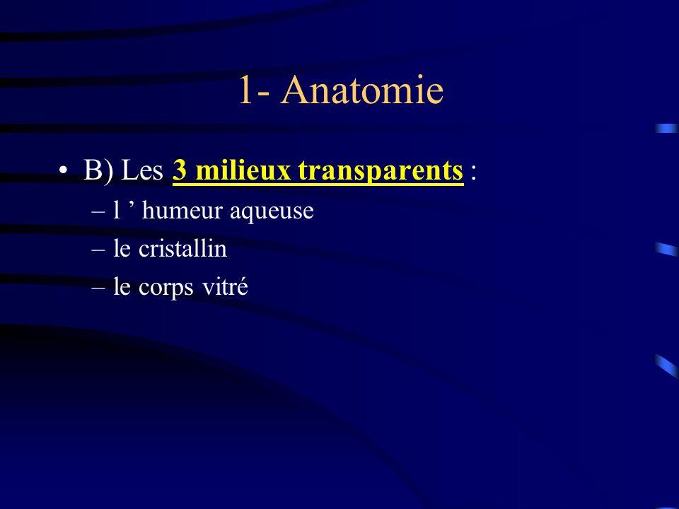 1- Anatomie B) Les 3 milieux transparents : l ' humeur aqueuse