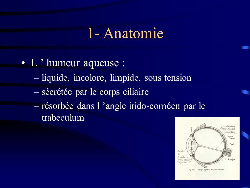 1- Anatomie L ' humeur aqueuse :