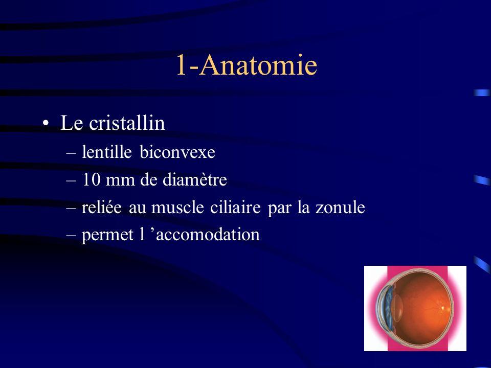 1-Anatomie Le cristallin lentille biconvexe 10 mm de diamètre