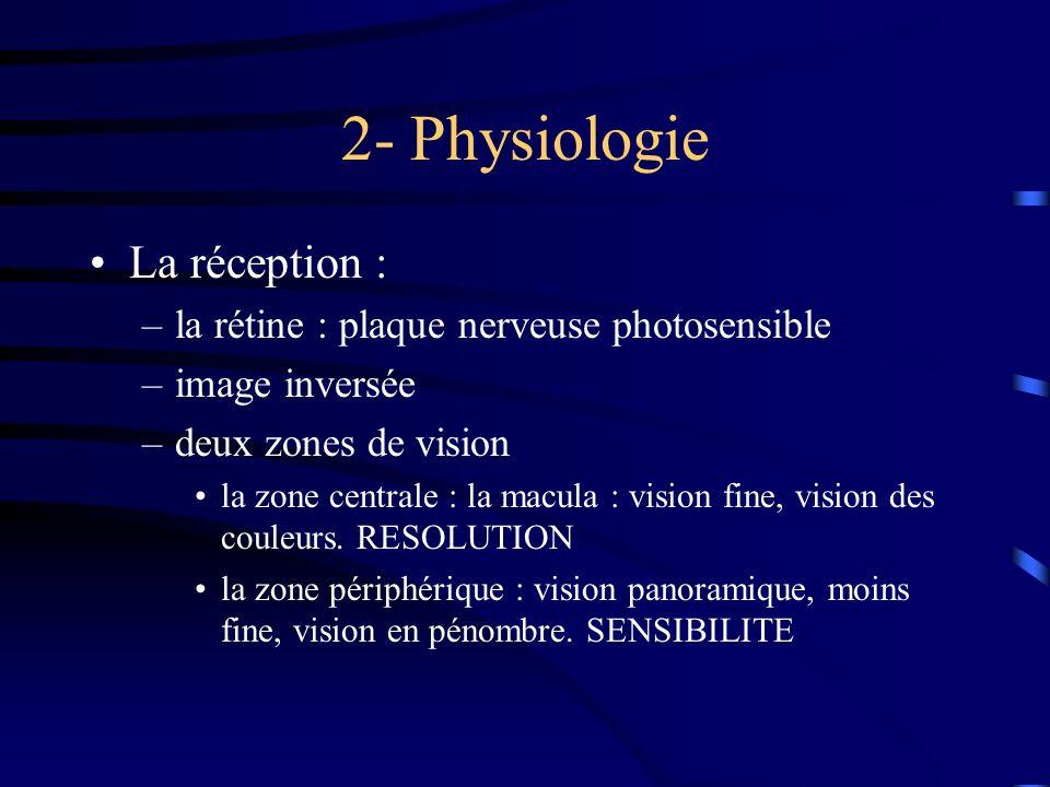 2- Physiologie La réception :