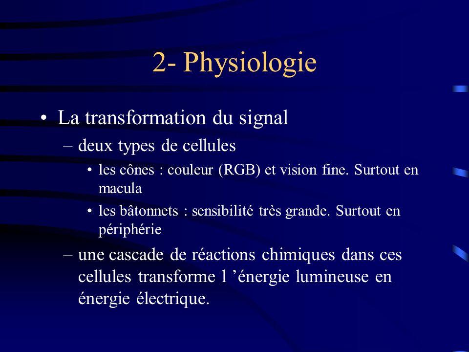 2- Physiologie La transformation du signal deux types de cellules