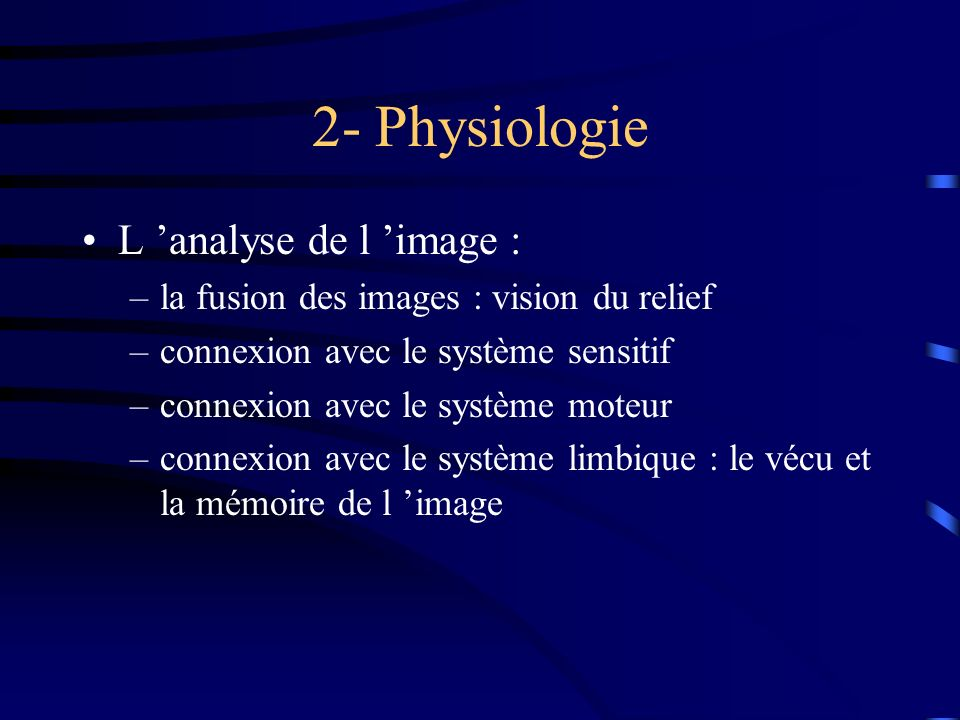 2- Physiologie L 'analyse de l 'image :
