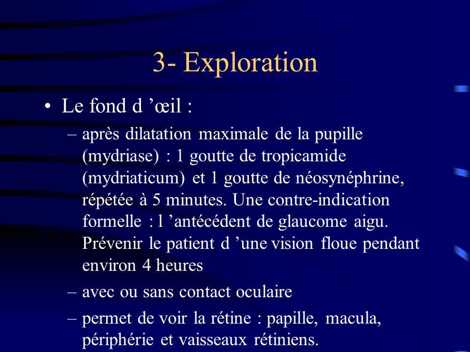 3- Exploration Le fond d 'œil :