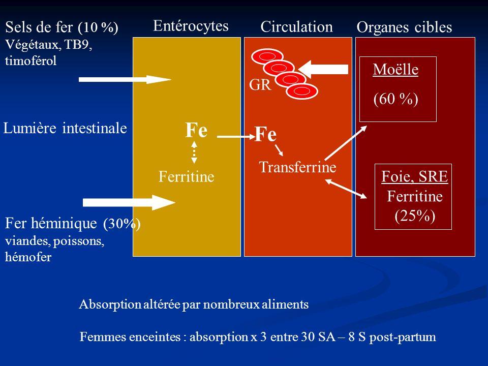 Femmes enceintes : absorption x 3 entre 30 SA – 8 S post-partum