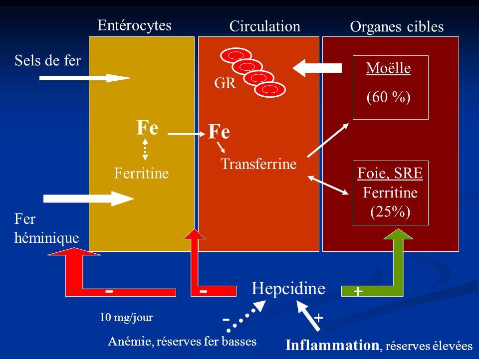 - - - Fe Fe Hepcidine + + Entérocytes Circulation Organes cibles