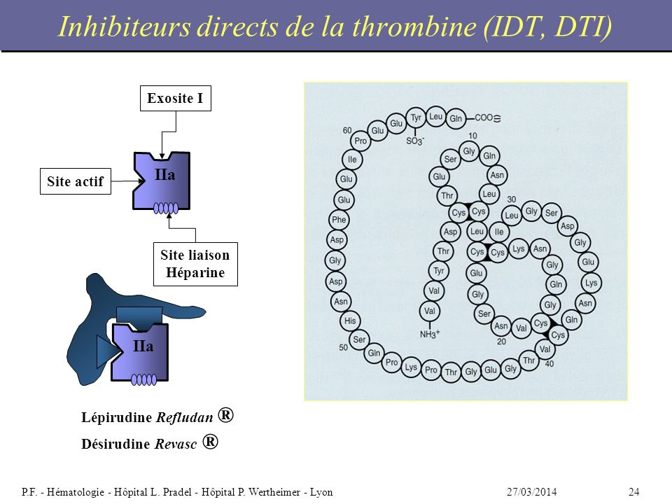 Inhibiteurs directs de la thrombine (IDT, DTI)