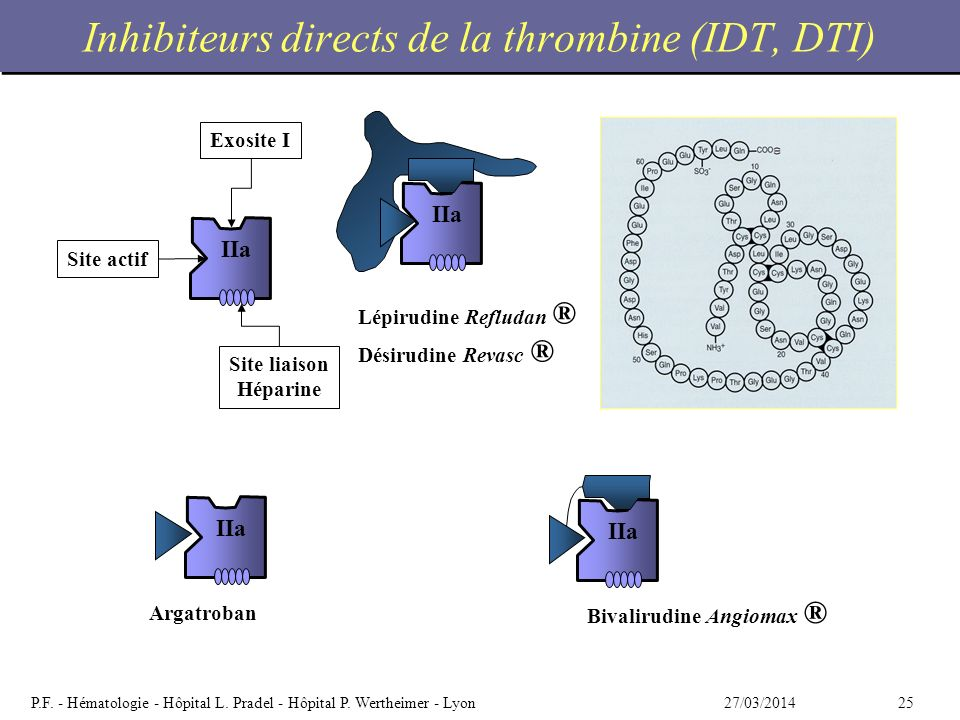 Inhibiteurs directs de la thrombine (IDT, DTI)