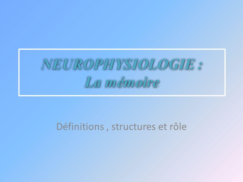 NEUROPHYSIOLOGIE : La mémoire