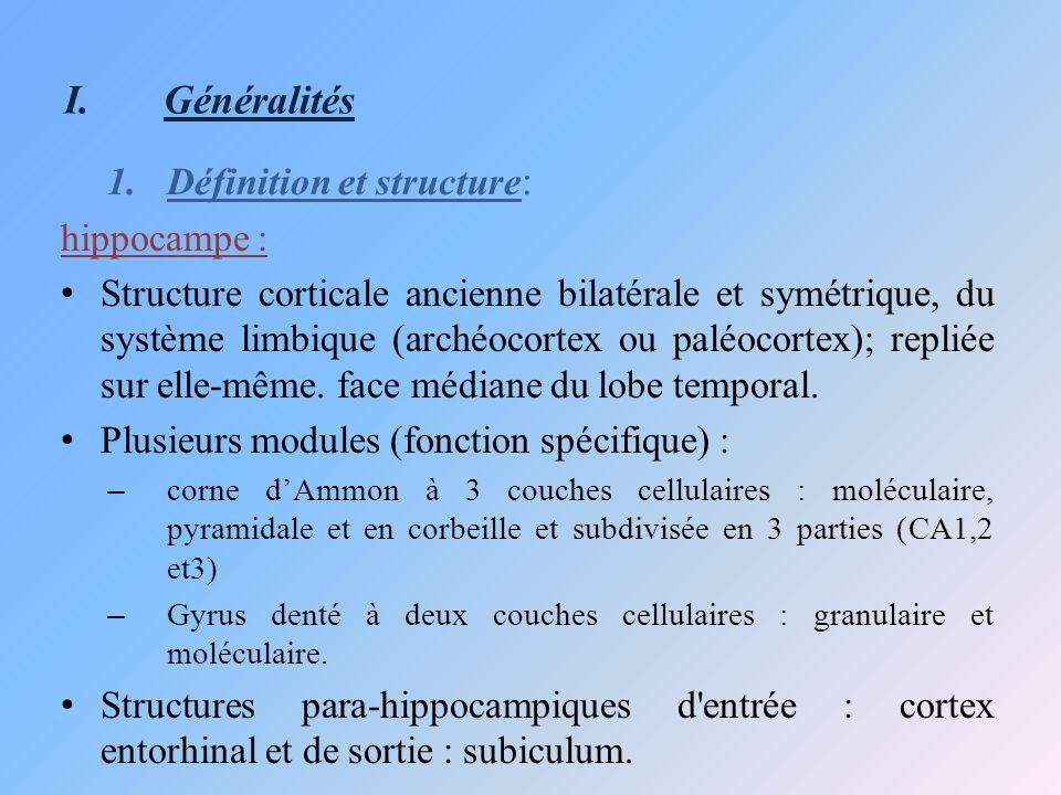 Généralités Définition et structure: hippocampe :