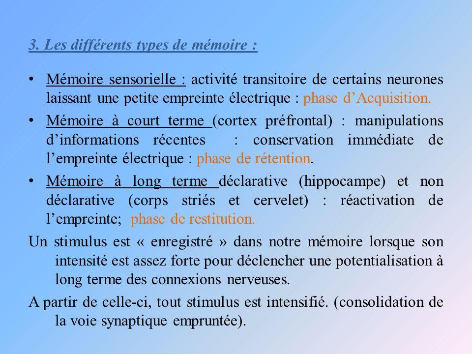 3. Les différents types de mémoire :