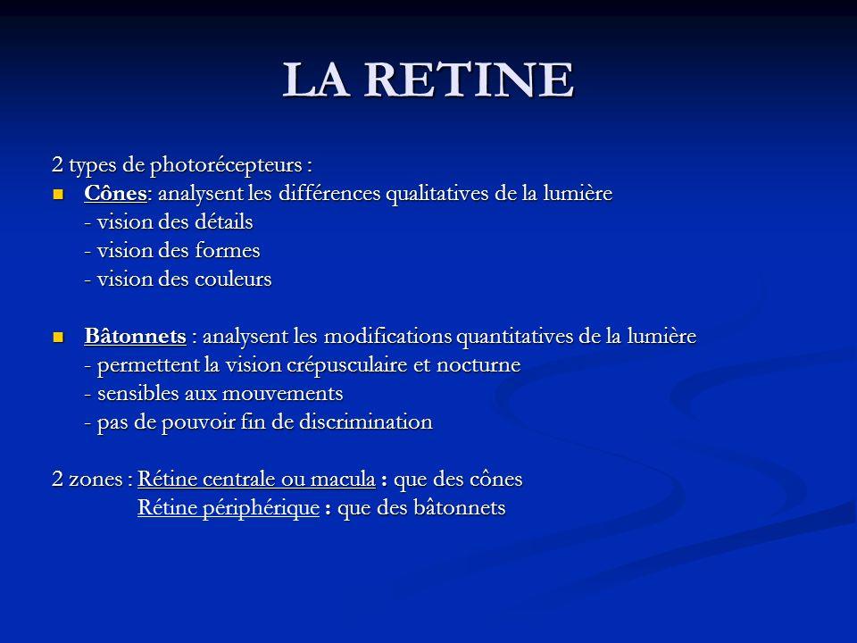 LA RETINE 2 types de photorécepteurs :