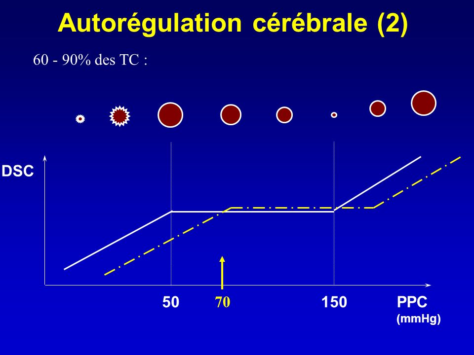 Autorégulation cérébrale (2)
